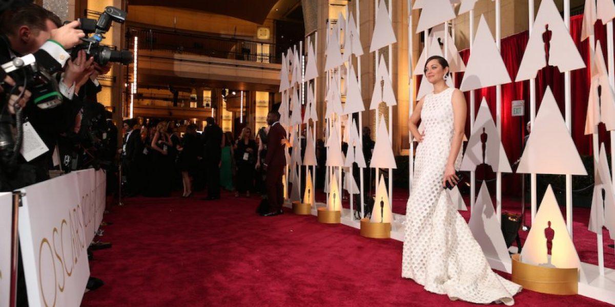 #Memes: Las burlas al vestido de Marion Cotillard en los Oscar 2015