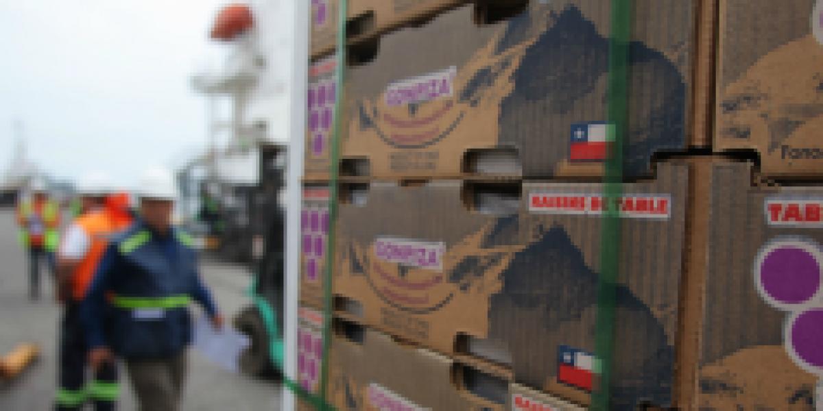 Se acaba paro portuario en EE.UU. que afectaba a exportadores chilenos de fruta