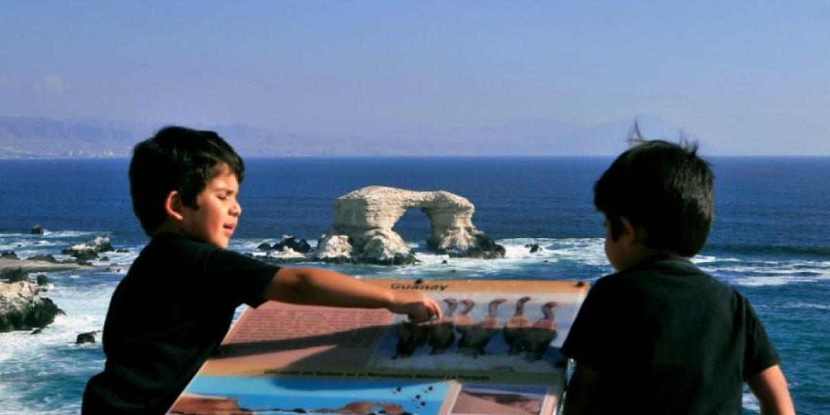 Niños de Antofagasta serán sometidos a exámenes de uñas y pelo por contaminación de plomo