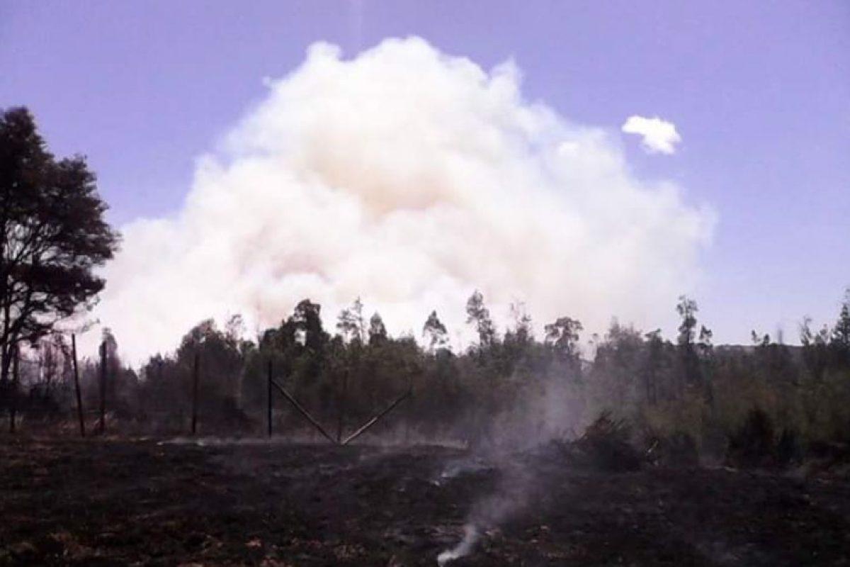 El incendio en la localidad de Mocopulli, en la comuna de Dalcahue aún se mantiene activo y producto de la magnitud se mantiene la Alerta Roja declarada por la Intendencia de la Región de Los Ríos. Foto:Reproducción. Imagen Por: