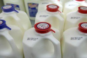 Una niña en Islandia casi se muere al beber leche que resultó tener pegamento. Foto:Getty Images. Imagen Por: