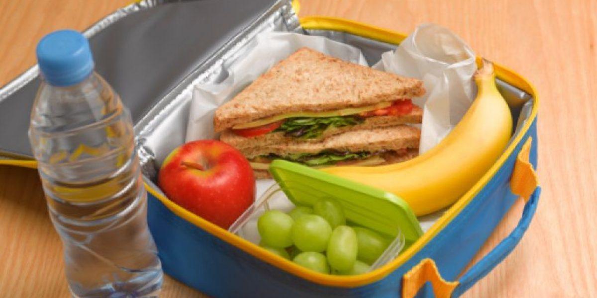 Cómo elegir el mejor contenedor para una colación segura para sus hijos
