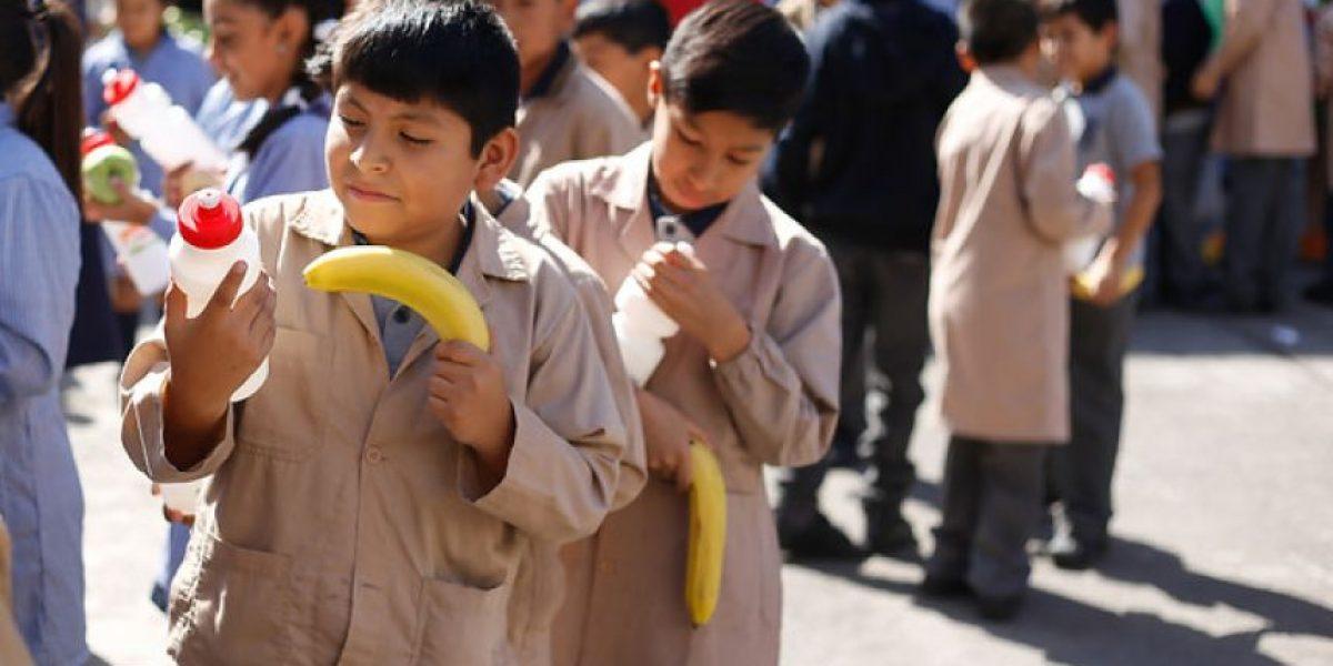 Cinco propuestas de colaciones saludables para nuestros hijos