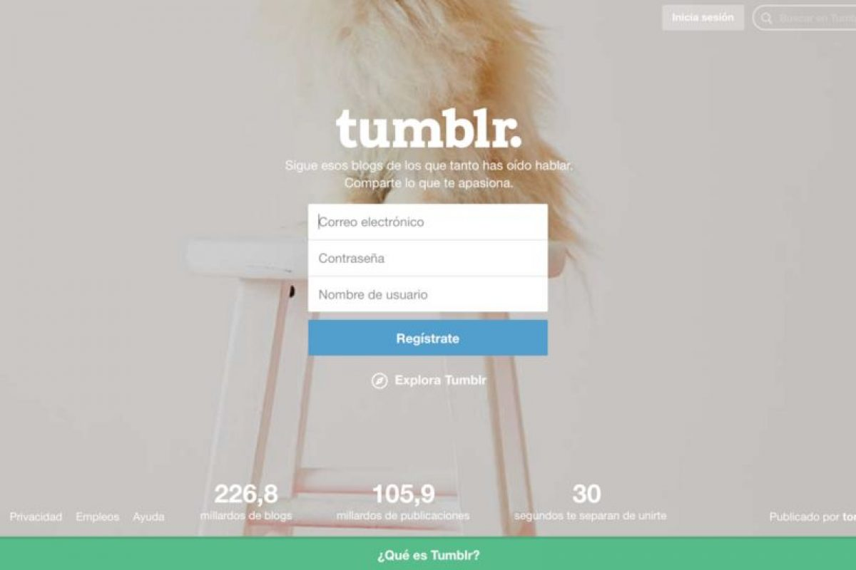 Así luce Tumblr hoy. Foto:Vía Tumblr. Imagen Por: