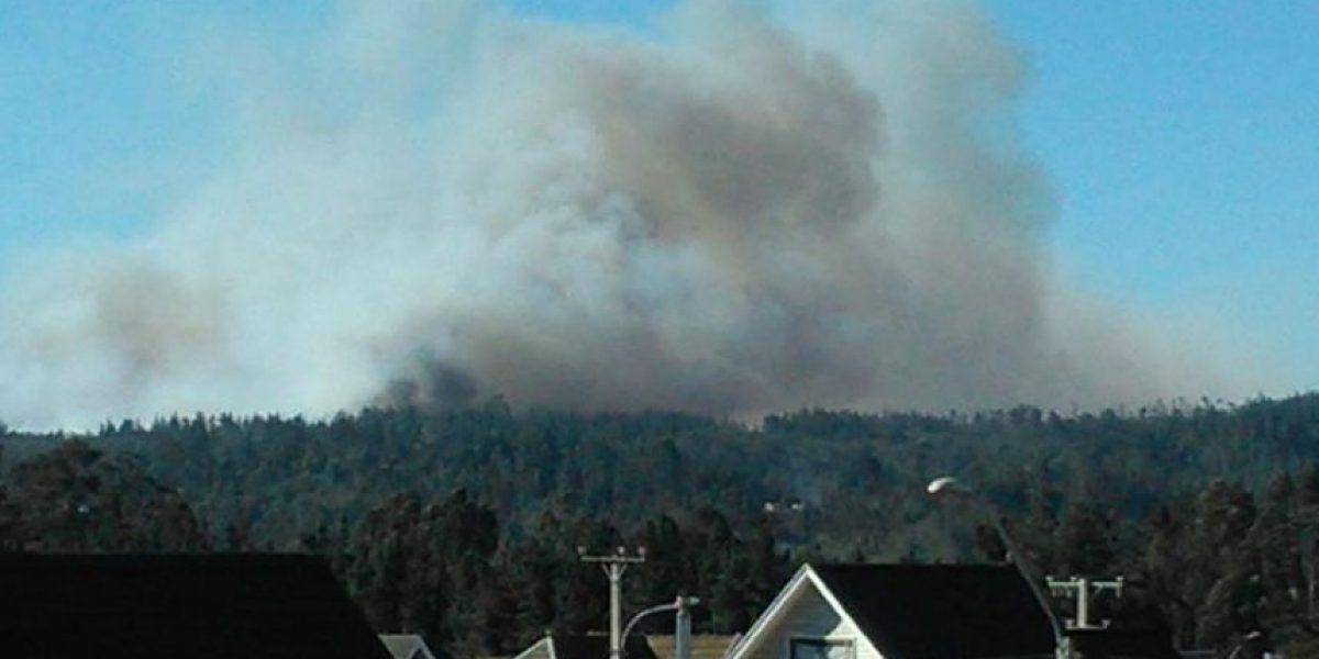 Intendencia comienza evacuación del sector alto de Valparaíso por incendio forestal