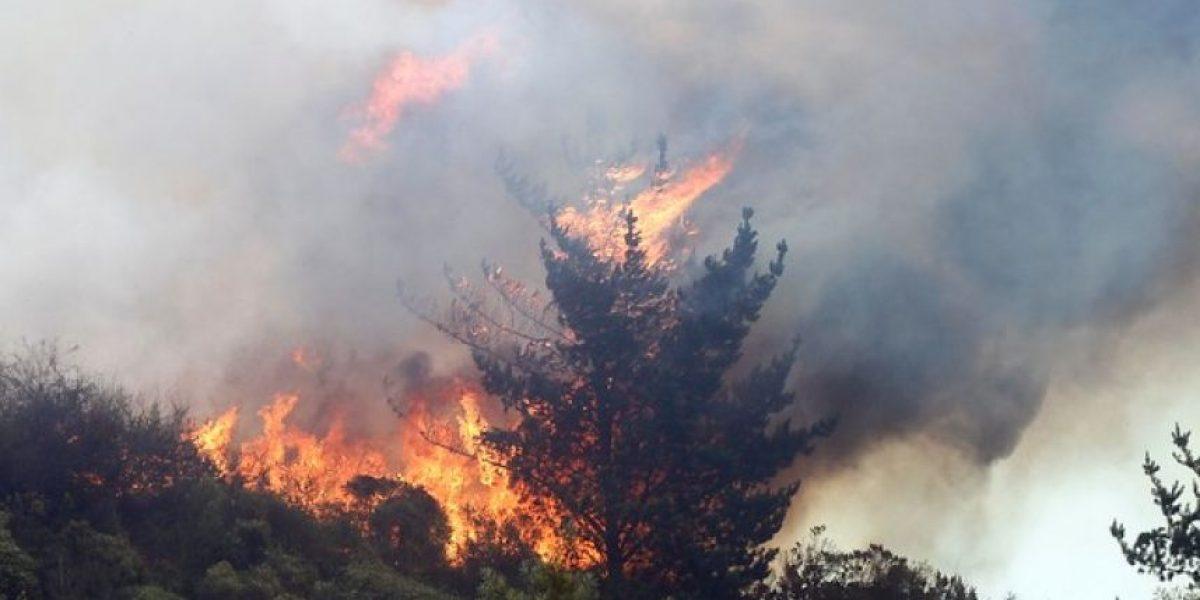 Director regional de ONEMI destacó labor de equipos de emergencia y población durante emergencia en Valparaíso