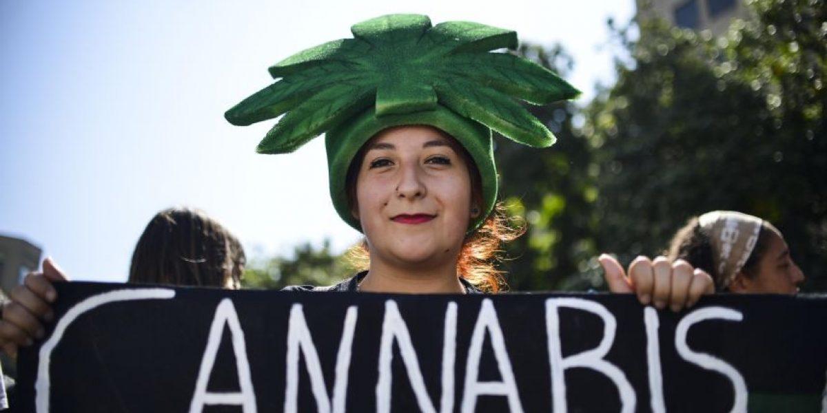 Familias buscan legalizar marihuana medicinal:
