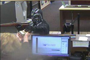 Foto:Pineville Police Department. Imagen Por: