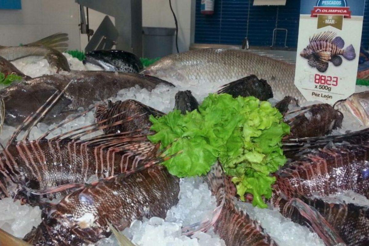 Y hace de la preparación de este pez algo mucho más accesible. Foto:Jorge Rausch/Facebook. Imagen Por: