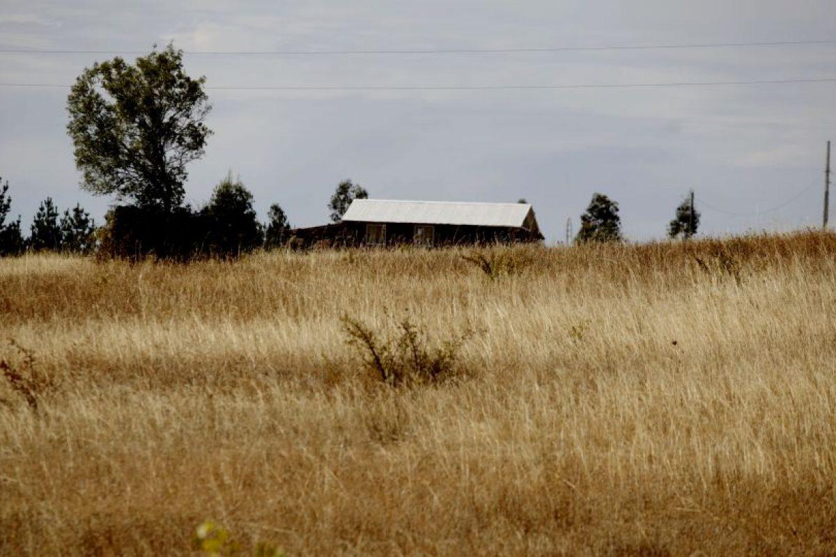 La Comisión Regional de Emergencia Agrícola solicitó al gobierno central decretar la emergencia en la zona, para poder implementar las medidas de apoyo, básicamente a agricultores ganaderos. Foto:Agencia UNO. Imagen Por: