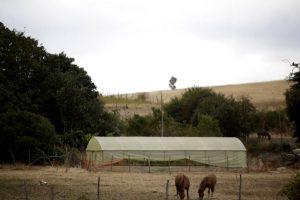 El Biobío registra 17 comunas con escasez de agua en niveles críticos, 6 de la Provincia de Ñuble y 11 de Biobío. Foto:Agencia UNO. Imagen Por:
