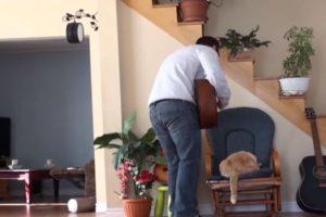 Nunca. Nunca subestimen lo que puede hacer un gato. Foto:Youtube. Imagen Por: