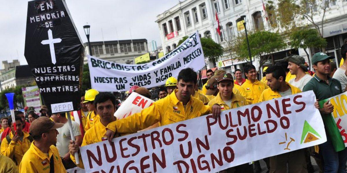 Brigadistas de la Conaf realizan protesta por bajos sueldos