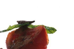 Ensalada de jitomates verdes y rojos con figura arquitectónica Foto:Cortesía: Restaurante Dulce Patria. Imagen Por: