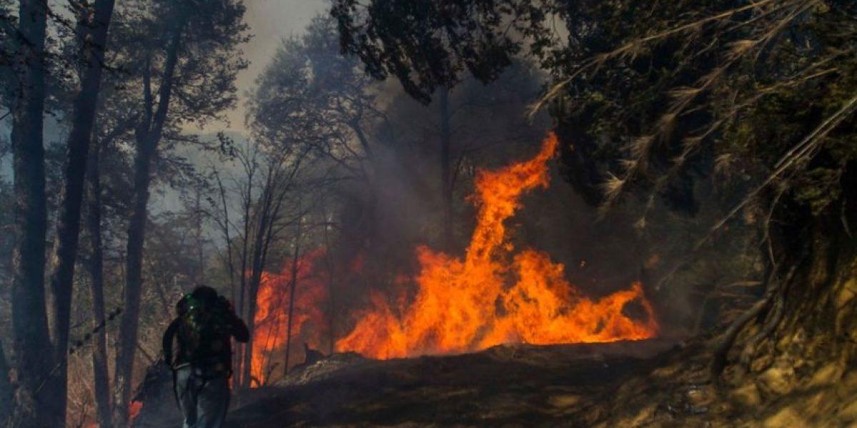 30 incendios activos y otros 69 controlados afectan a más de 17.000 hectáreas en cinco regiones