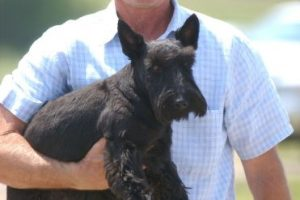 George W. Bush consiente a su pequeño amigo Foto:Getty Images. Imagen Por:
