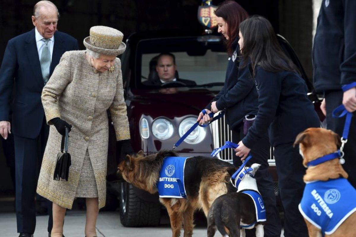 La Reina Isabel II disfruta la cercanía de los canes Foto:Getty Images. Imagen Por:
