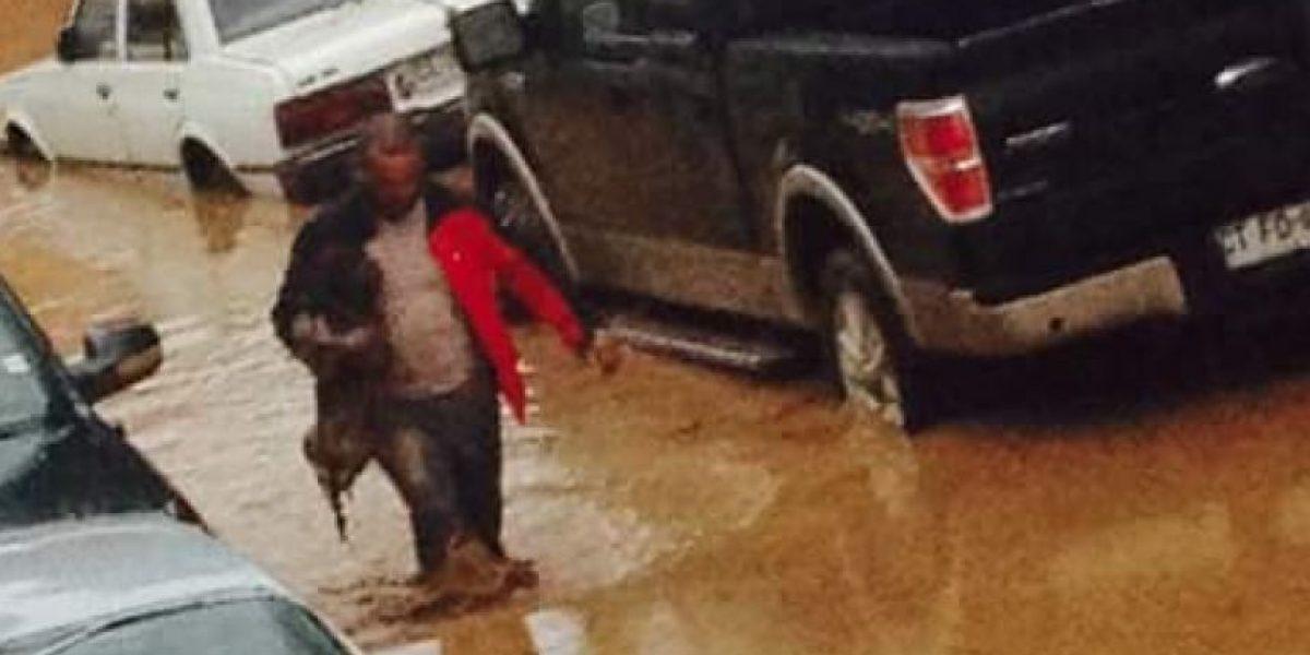 La conmovedora imagen del rescate de un perrito tras desborde de río Copiapó