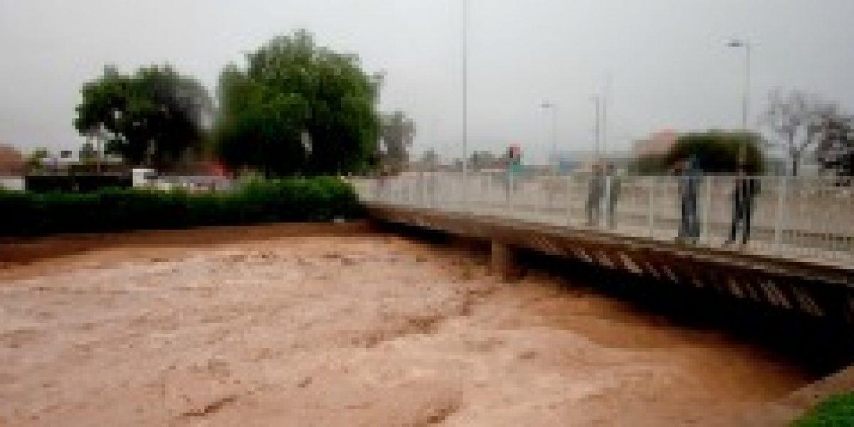 Industria pisquera detuvo periodo de cosecha por lluvias en el norte