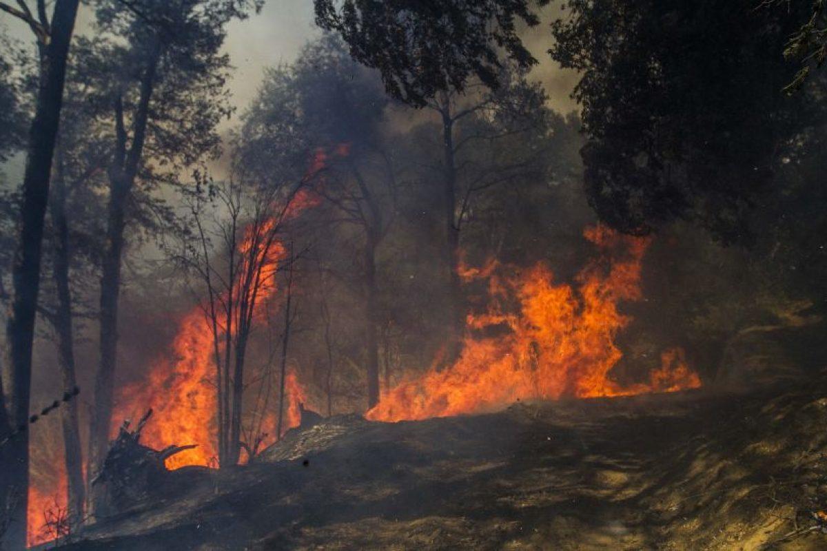 Las primeras diligencias determinaron que el fuego se inició el pasado sábado 14 de marzo en esta quebrada, aproximadamente al mediodía. Foto:Agencia UNO. Imagen Por: