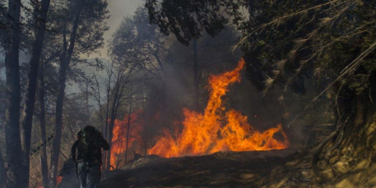 Incendio en Reserva China Muerta habría sido intencional