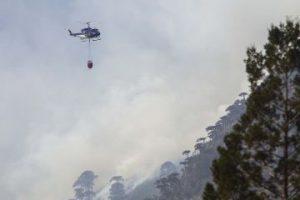 El incendio que desde hace una semana afecta a la Reserva Nacional China Muerta, en la localidad de Melipeuco, a 700 kilómetros de Santiago, ha consumido una superficie de 5.708 hectáreas de arbolado natural, incluido un gran número de araucarias. Foto:Agencia UNO. Imagen Por: