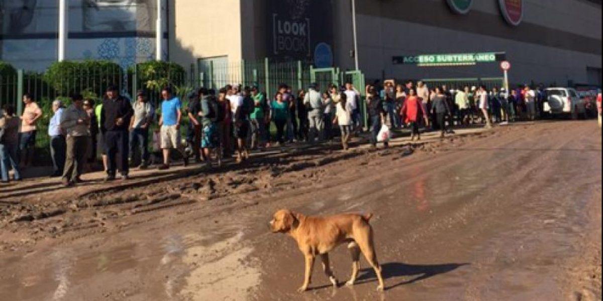 Tragedia en el Norte: largas filas esperan apertura de supermercados en Copiapó