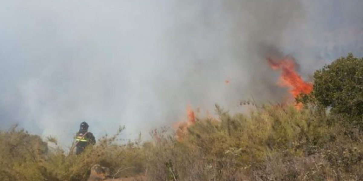 Declaran Alerta Roja por incendio forestal en Algarrobo