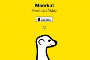 Meerkat significa suricata en inglés. Foto:Life On Air, Inc.1. Imagen Por: