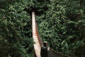 Foto por Sawyer K. de Canadá Foto:Apple. Imagen Por:
