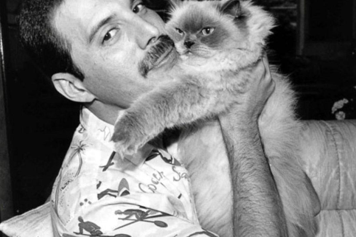 Freddie Mercury Foto:Facebook/Freddie Mercury. Imagen Por: