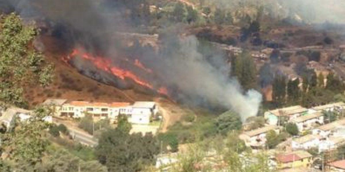 Onemi declara alerta roja por incendio forestal en Viña del Mar