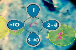 El juego es muy simple y puede salvar vidas. Foto:tuberspot.org. Imagen Por: