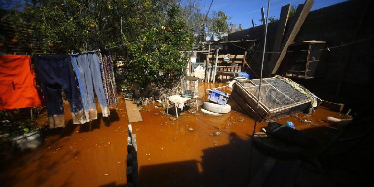 Twitter en llamas: alcalde de Copiapó habría usado retroexcavadora para limpiar solamente su casa