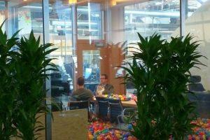 Mark en una reunión. Foto:twitter.com/cas42it. Imagen Por: