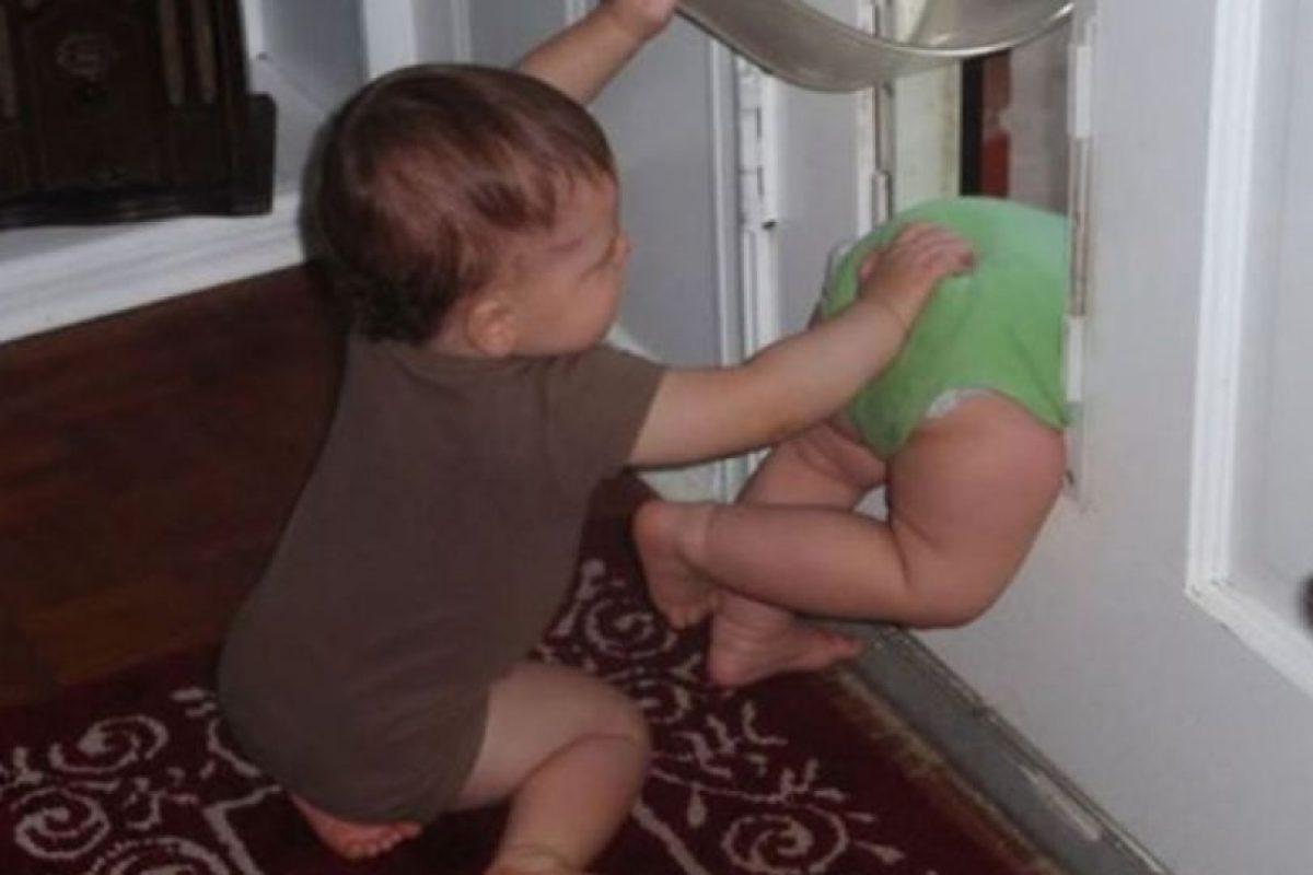 Foto:Funny Pics. Imagen Por: