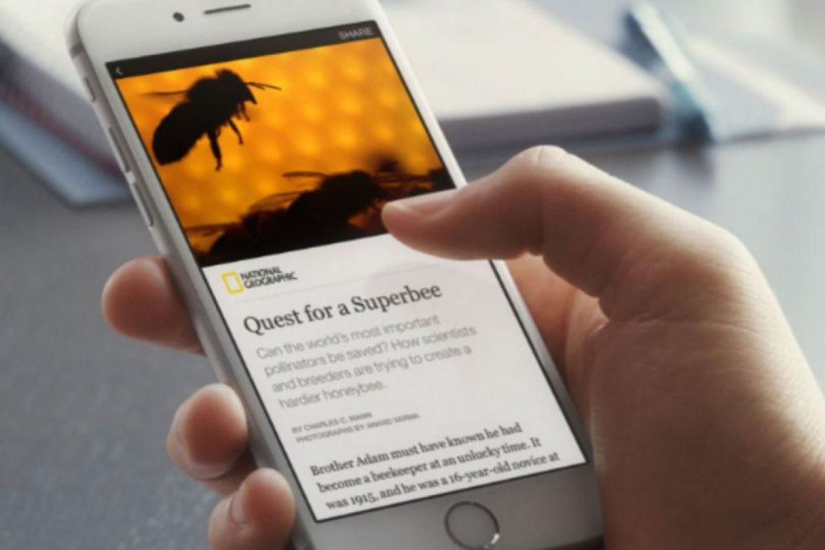 """""""Instant articles"""" de Facebook también ofrece opciones de medición y análisis de tráfico para el creador y anunciante Foto:Facebook. Imagen Por:"""