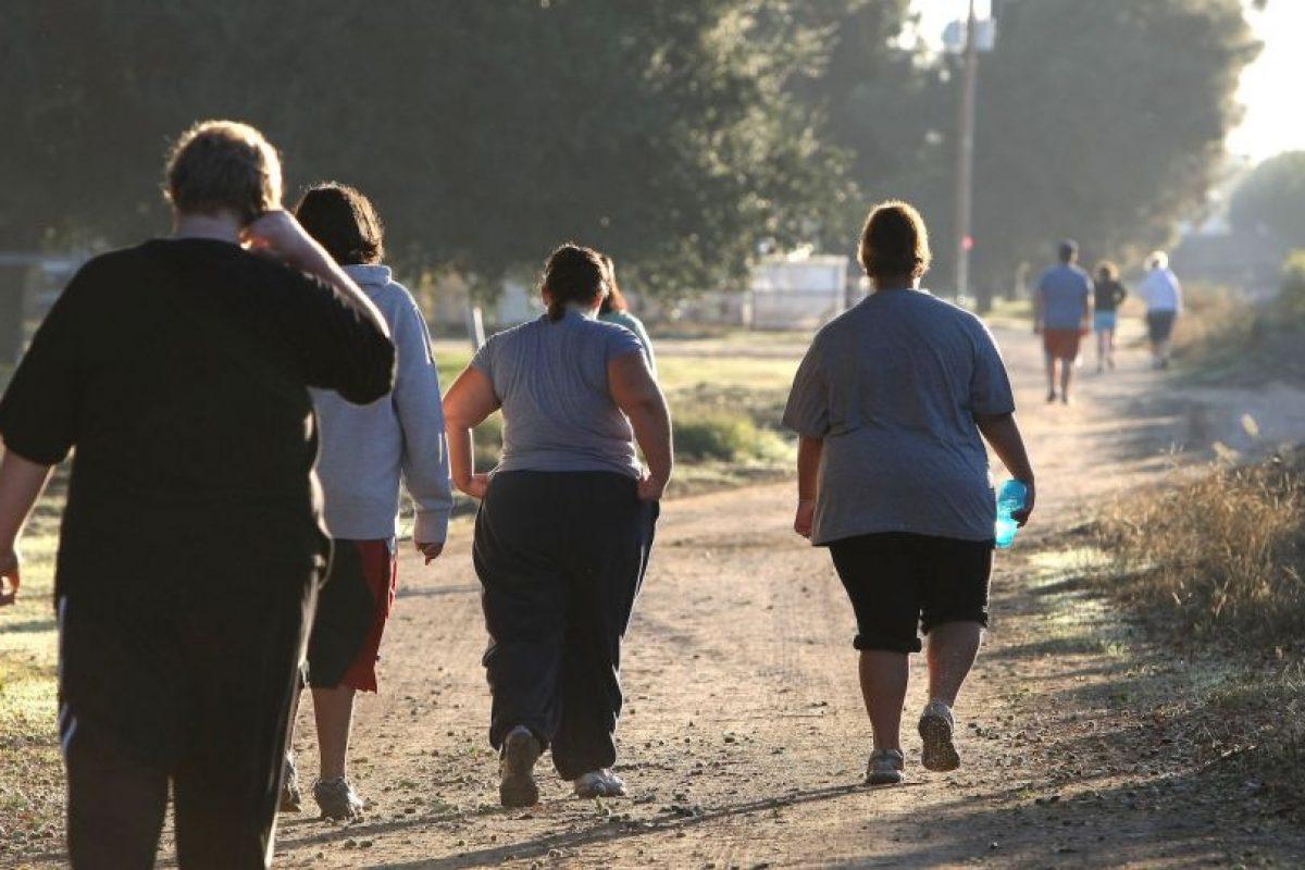 Incluso subieron más que otras criaturas a las que se les daban alimentos grasos. Foto:Getty Images. Imagen Por: