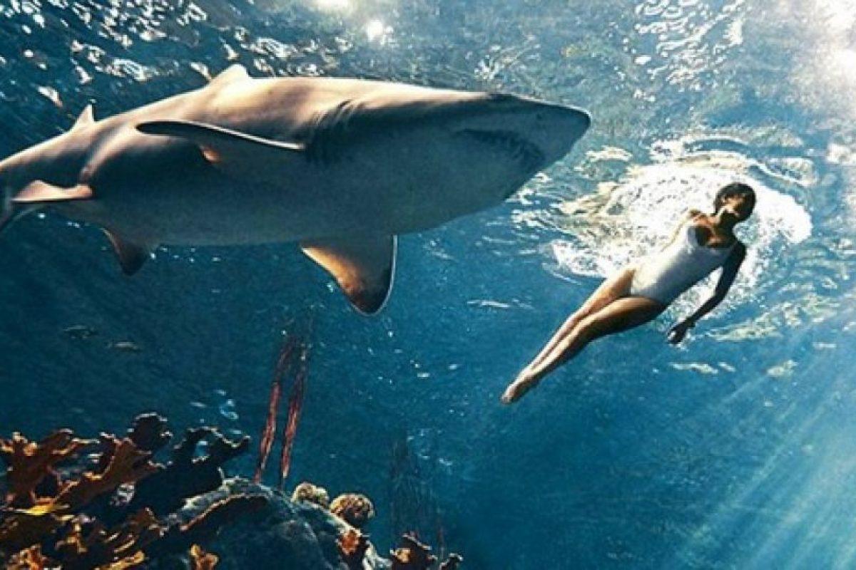 Rihanna se animó a nadar en una piscina llena de tiburones Foto:Harper's Bazaar. Imagen Por: