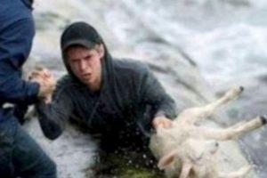 Estos noruegos rescataron a una cabra del mar. Foto:vía Tumblr. Imagen Por: