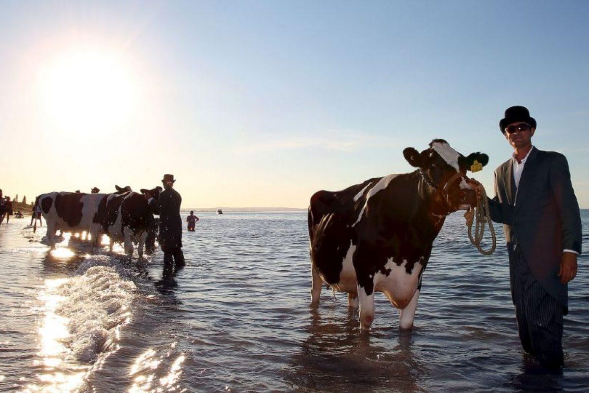 No hay imagen más conmovedora que esta Foto:Getty Images. Imagen Por: