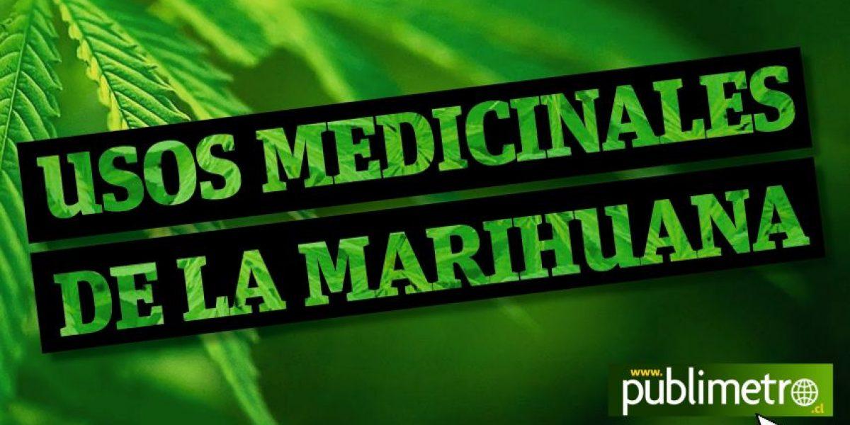 Infografía: Usos medicinales de la marihuana