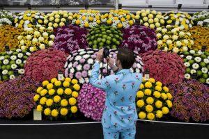 Gran Pabellón en el 2015 Chelsea Flower Show de Londres . Foto:AFP. Imagen Por: