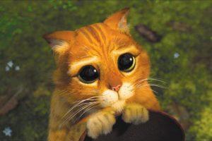 """Y a veces resultan todos unos """"gatitos"""". Foto:vía Dreamworks. Imagen Por:"""
