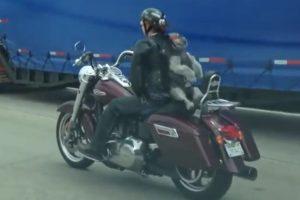 Sentado sobre la moto de su dueña Foto:Vïa Youtube/Shawn White. Imagen Por: