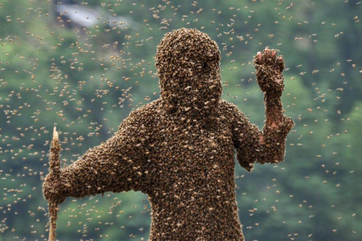 Lu Kongjiang, es otro apicultor que ha dejado que las abejas se posen en su cuerpo. Foto:Getty Images. Imagen Por: