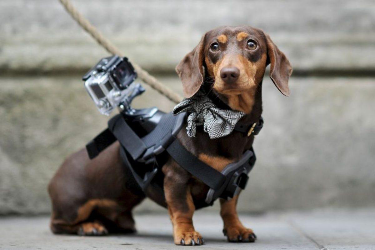 O en cualquier cosa Foto:Getty Images. Imagen Por: