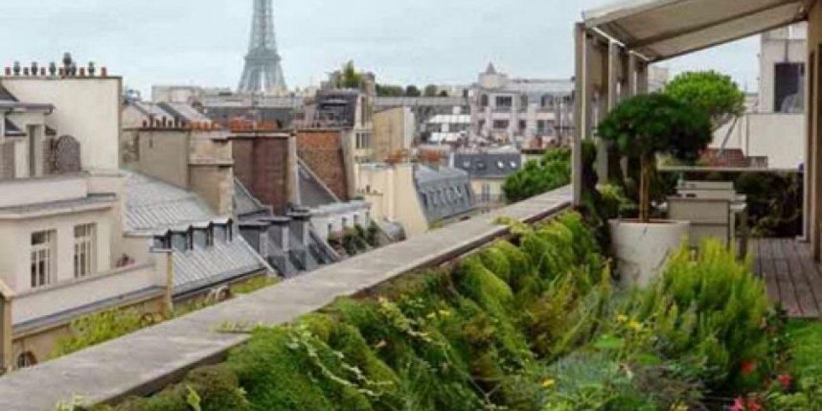 Los chefs cultivan sus huertos en las azoteas de París