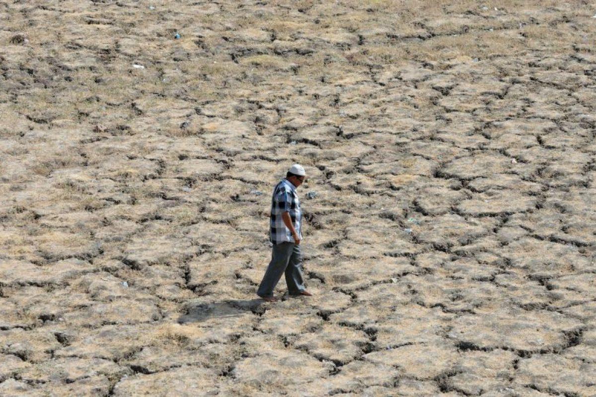 Sequía en India Foto:AFP. Imagen Por: