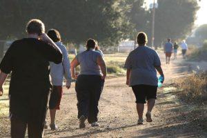 Tras administrarlo durante una semana a un grupo de ratones obesos vieron que reducían su ingesta de alimentos en aproximadamente un 80%, en comparación con los no tratados. Foto:Getty Images. Imagen Por: